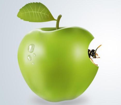 购买苹果企业开发者账号怎么选择靠谱平台